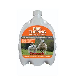 Pre-Tupping + Pre & Post Lambing Drench - 1L / 2.5L