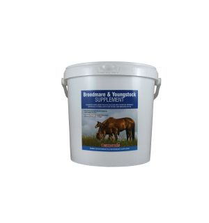 Broodmare & Youngstock Supplement